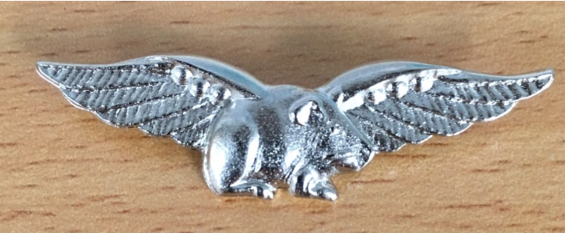 Close up of silver badge - a guinea pig with wings